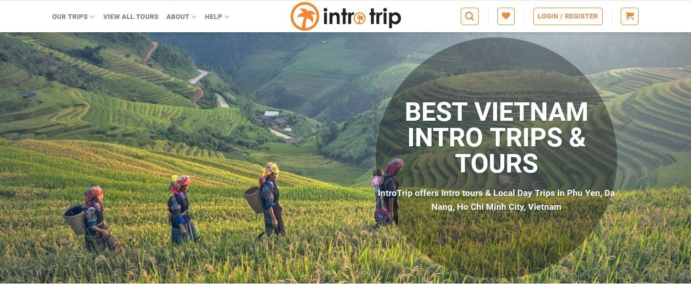 IntroTrip-website-development-by-Helixgram-Saigon-web-design-saigon-web-development-SEO-marketing-website-content-facebook-marketing-wordpress-website-designed-by-Helixgram-Web-Design